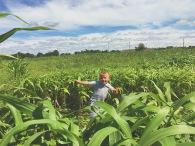 Rutledge Wilson Farms